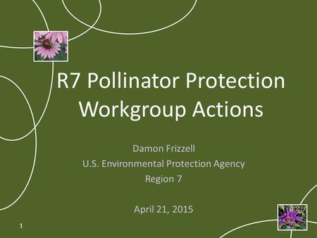 R7 Pollinator Protection Workgroup Actions Damon Frizzell U.S. Environmental Protection Agency Region 7 April 21, 2015 1.