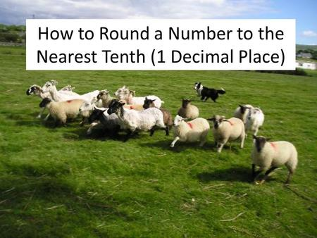 How to Round a Number to the Nearest Tenth (1 Decimal Place)
