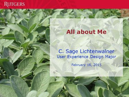 All about Me C. Sage Lichtenwalner User Experience Design Major February 16, 2015.