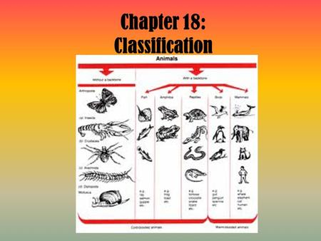 Chapter 18: Classification. 18-1: History of Taxonomy.