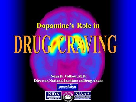 NATIONAL INSTITUTE ON DRUG ABUSE NIDA NIAAA National Institute Alcohol Abuse and Alcoholism Nora D. Volkow, M.D. Director, National Institute on Drug Abuse.
