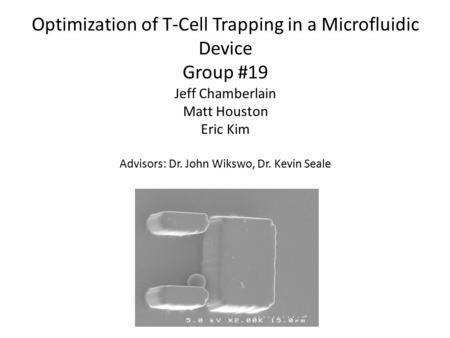 Optimization of T-Cell Trapping in a Microfluidic Device Group #19