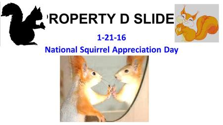 PROPERTY D SLIDES 1-21-16 National Squirrel Appreciation Day.