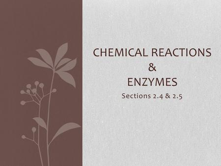 Sections 2.4 & 2.5 CHEMICAL REACTIONS & ENZYMES. 2.4 Chemical Reactions Key Concept: Life depends on chemical reactions.