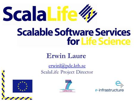 Erwin Laure ScalaLife Project Director.