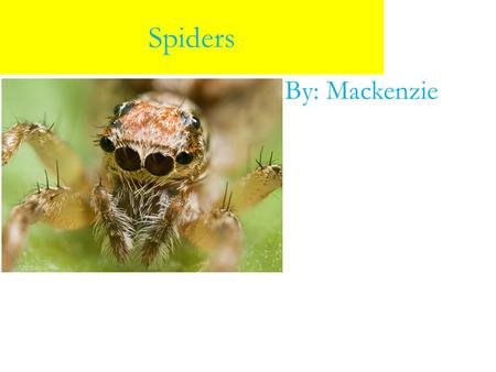 Spiders By: Mackenzie. Spider Food Special Features Here's some special features about spiders. For example, a lot of webs silk strands are sticky so.