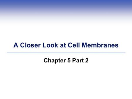 A Closer Look at Cell Membranes Chapter 5 Part 2.