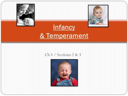 temperament flexible fearful and feisty Children into three temperament types: easy or flexible  active or feisty children may be fussy, irregular in their feeding and sleeping habits, fearful of.