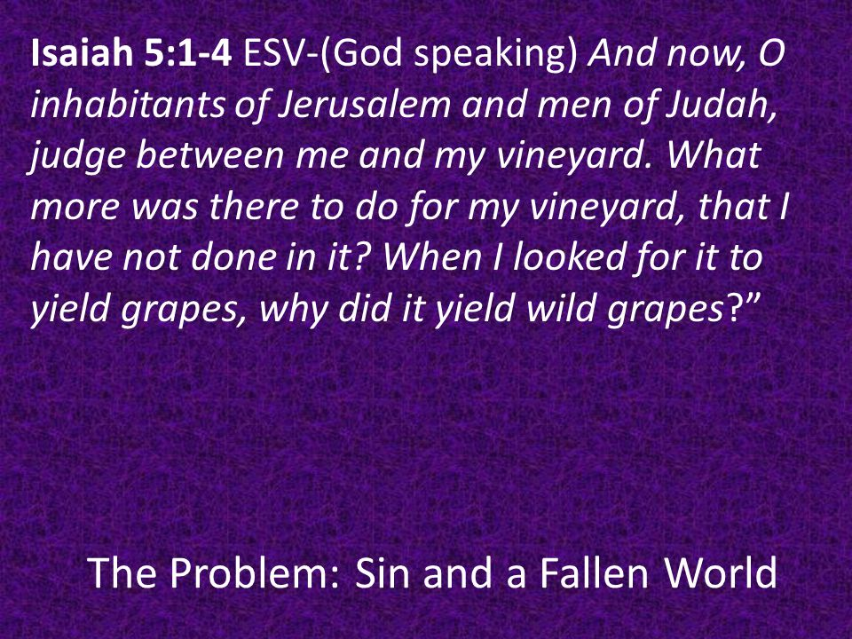 The Problem: Sin and a Fallen World Discussion: From God's point of view how does creation disappoint him.