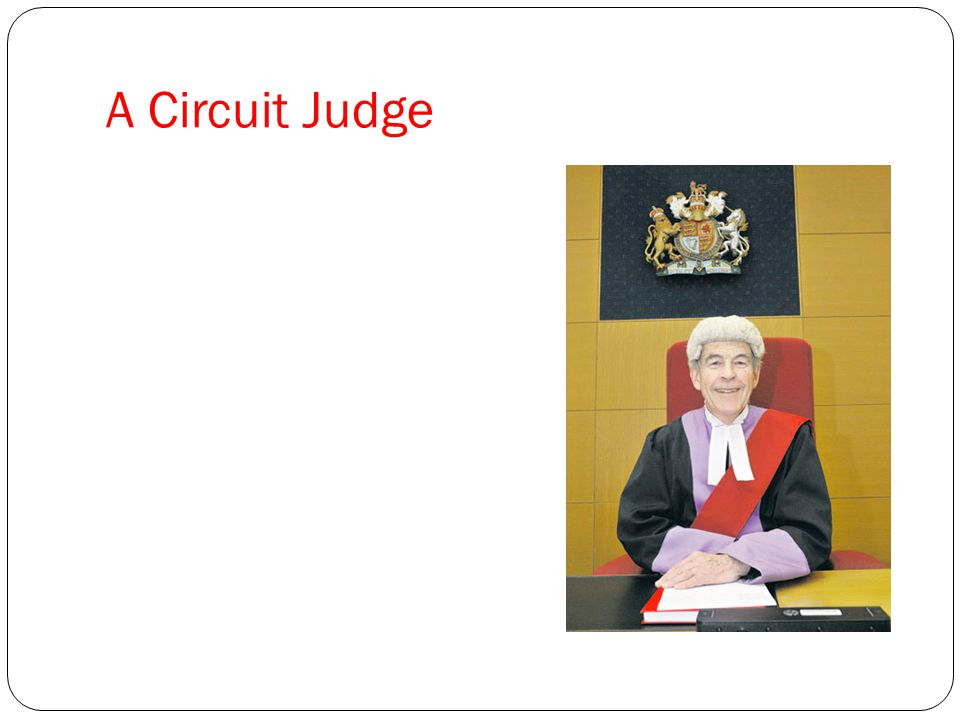 A Circuit Judge