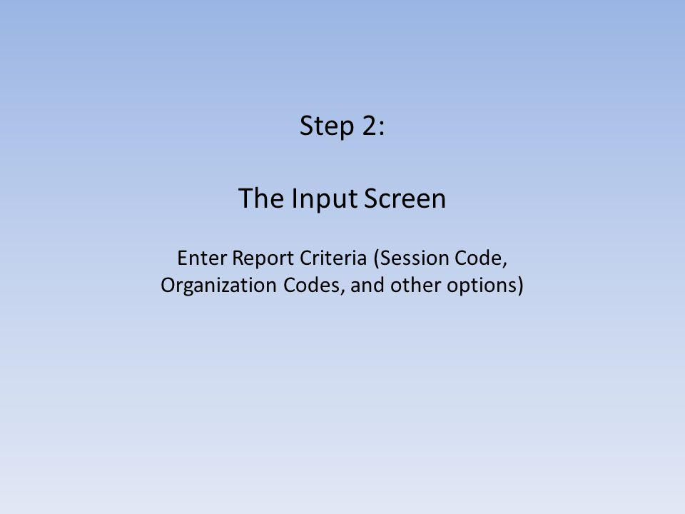 On the Input screen that follows, enter the required information for the report.