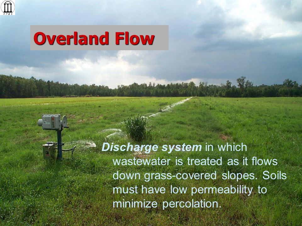 Constructed Wetlands Discharge system where wastewater treated by plant/soil system then discharged to stream.