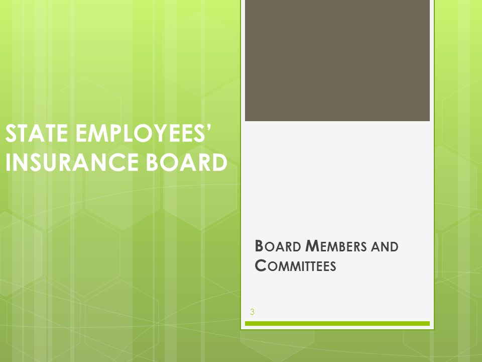 SEIB BOARD MEMBERS Appointed ByPosition/ NameTerm GovernorPersonnel Board Member John Carroll 6 year term GovernorPersonnel Board Member Joe N.