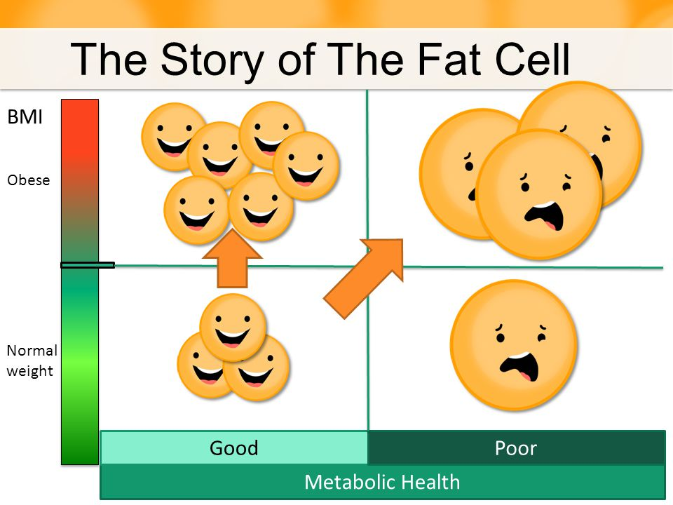 The Story of The Fat Cell Obese 55 yo man with Metabolic Syndrome