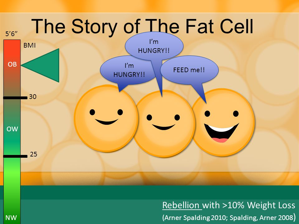The Story of The Fat Cell EAT MORE.BURN LESS. I'm HUNGRY !.