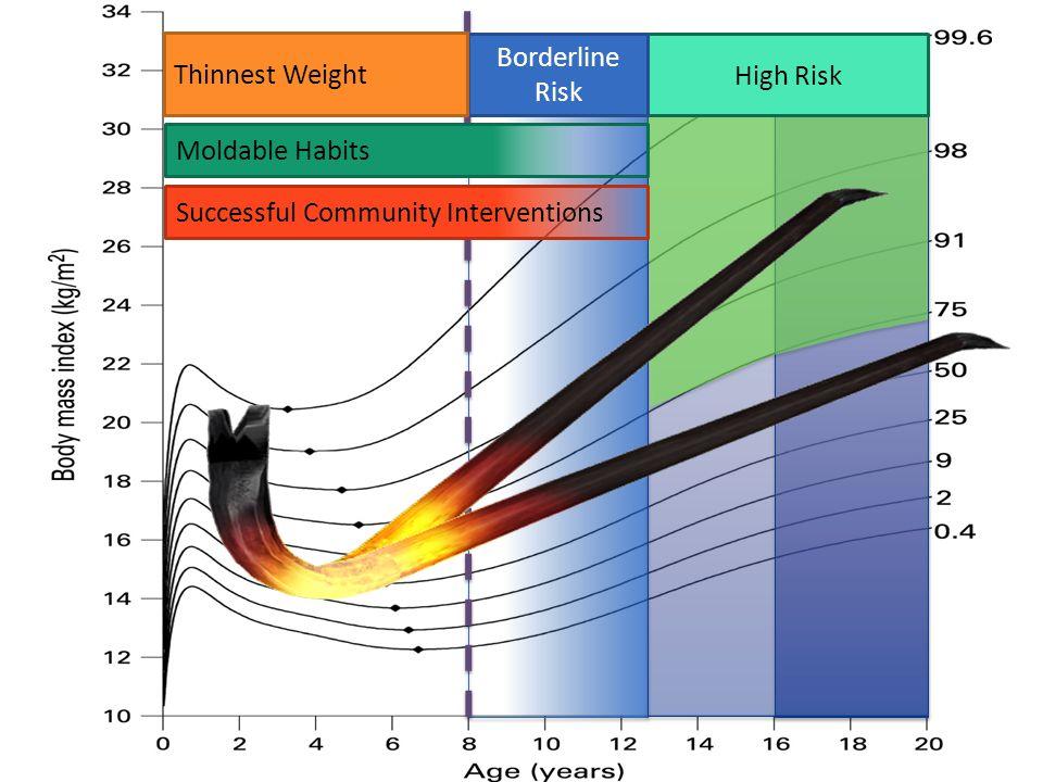 The Molten Moment birth1525+ 10 20 Age: Behavior Change Possible Decrease CVD Risk Behavior Change Possible Alter growth trajectory Behavior Change Possible  Obesity MOLTEN MOMENT Prevention of Obesity