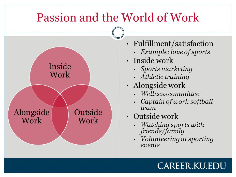 Types of Clients Visionary  General, unfocused career plans  Lofty passion Big dreams – how to execute.