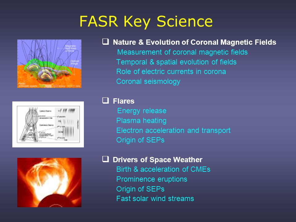 FASR Science (cont)  The thermal solar atmosphere Coronal heating - nanoflares Thermodynamic structure & dynamics Formation & structure of filaments  Solar Wind Birth in network Coronal holes Fast/slow wind streams Turbulence and waves  Synoptic studies Radiative inputs to upper atmosphere Global magnetic field/dynamo Flare statistics