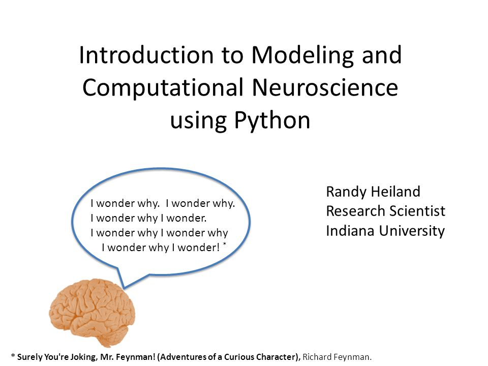 Overview Computational Science: Experiments, Models, Simulations, Analyses Modeling Neuroscience Python programming Questions.