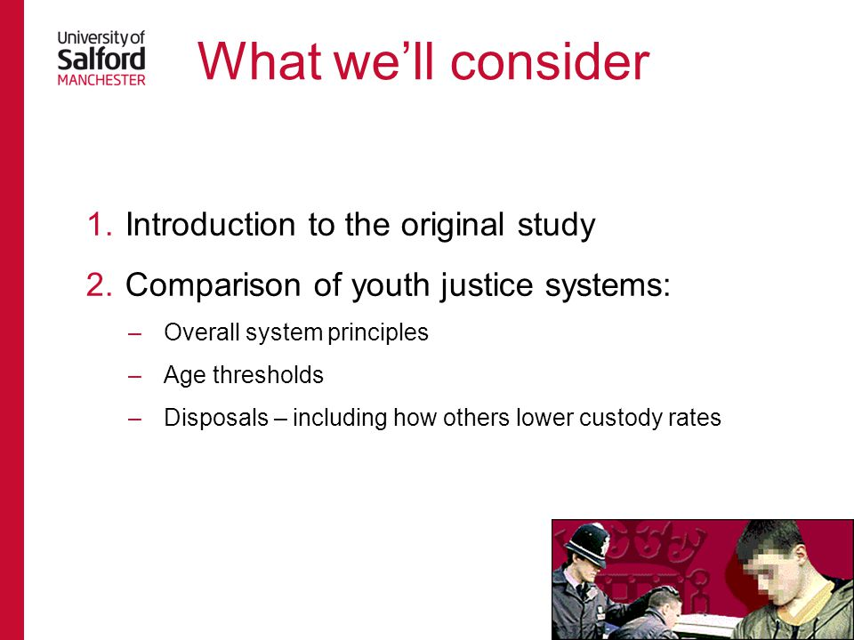 Hazel N (2008) Cross-national review of youth justice.