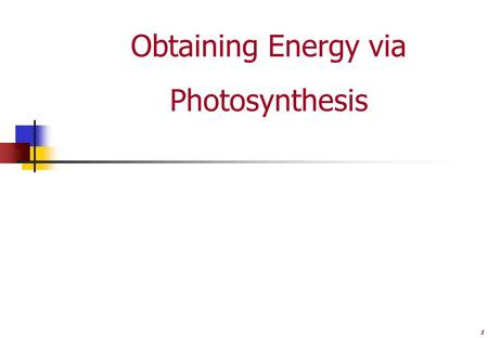 1 Obtaining Energy via Photosynthesis. 2 Why is Photosynthesis important? #1  One of the most important processes on Earth.  Chemical energy that is.