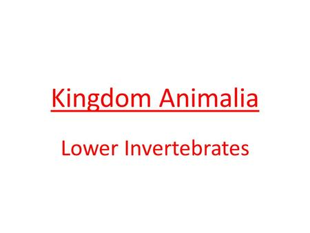 Kingdom Animalia Lower Invertebrates. Characteristics: eukaryotic multicellular heterotrophic consumers no cell walls sexual and asexual reproduction.