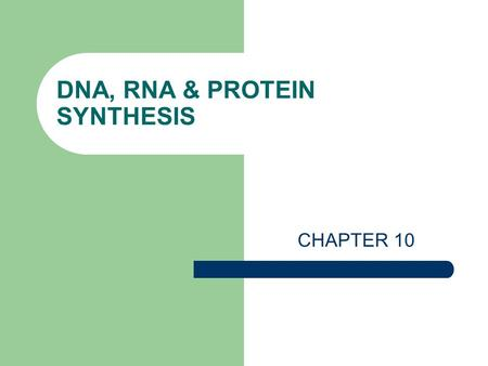 DNA, RNA & PROTEIN SYNTHESIS CHAPTER 10. DNA = Deoxyribonucleic Acid What is the purpose (function) of DNA? 1. To store and transmit the information that.