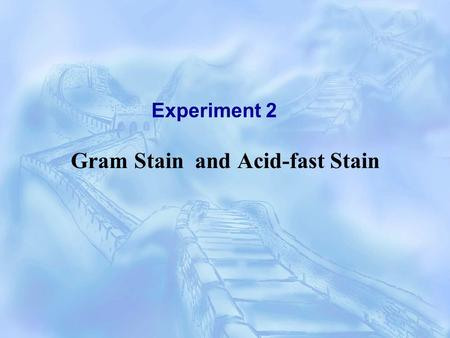 Experiment 2 Gram Stain and Acid-fast Stain.  Staining - simple stain (only one dye) - differential stain (more than one dye) G+G+ G-G- Gram stain Acid-fast.