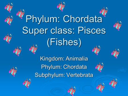 Phylum: Chordata Super class: Pisces (Fishes)