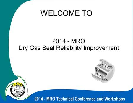 MRO Dry Gas Seal Reliability Improvement