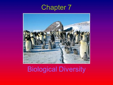 Chapter 7 Biological Diversity. –The variety of life- forms commonly expressed as the number of species in an area (the genes they contain and the ecosystems.