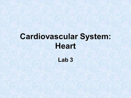 Cardiovascular System: Heart Lab 3. Heart Anatomy Approximately the size of your fist Location –Superior surface of diaphragm –Left of the midline –Anterior.
