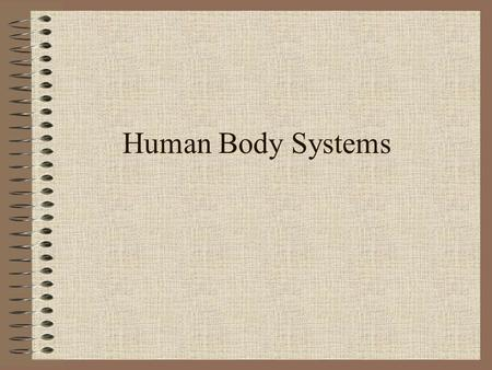 Human Body Systems. Integumentary System Functions: –protects the body against pathogens – helps regulate body temperature Major Organs: skin, hair, nails,