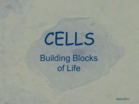 Martin2011 CELLS Building Blocks of Life. Martin2011 Prokaryotic Cells Prokaryotic cells Very simple Few internal structures DNA is NOT enclosed in a.