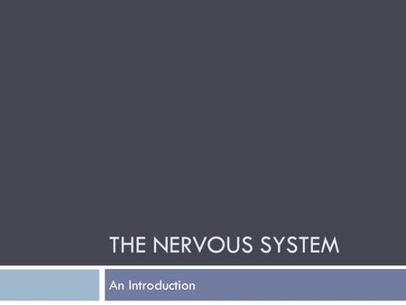 THE NERVOUS SYSTEM An Introduction. Basic Functions  Sensory Input  Integration  Motor Output.