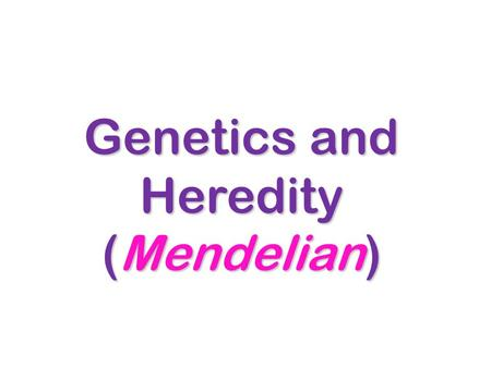 Genetics and Heredity (Mendelian). History Genetics is the study of genes. Genetics is the study of genes. Inheritance is how traits, or characteristics,
