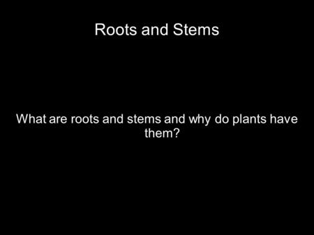 Roots and Stems What are roots and stems and why do plants have them?