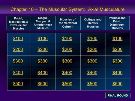 Chapter 10 – The Muscular System: Axial Musculature $100 $200 $300 $400 $500 $100$100$100 $200 $300 $400 $500 Facial, Mastication, & Extra-ocular Muscles.