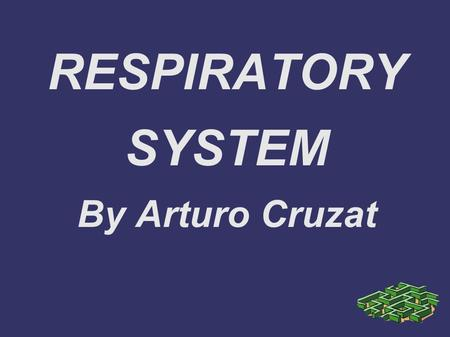 RESPIRATORY SYSTEM By Arturo Cruzat. Glossary 1. The Lungs 2. Breathing 3. Gas Exchange 4. Smoking and disease.