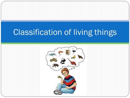Classification of living things. What makes living things different from non-living things? From the picture: 1. List 3 different living things 2. List.