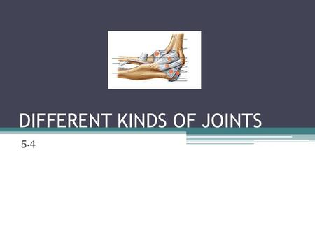 DIFFERENT KINDS OF JOINTS 5.4. Joints are where two or more bones meet. They are divided into three types depending on how freely the bones can move.