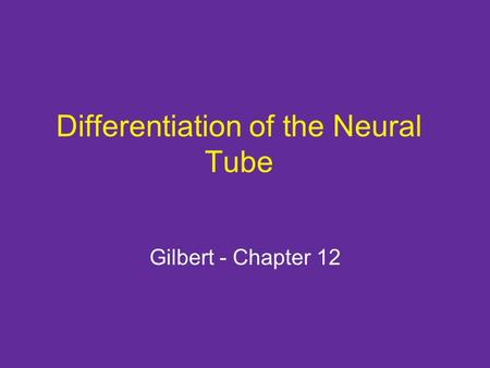 Differentiation of the Neural Tube Gilbert - Chapter 12.