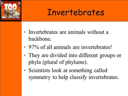 Invertebrates Invertebrates are animals without a backbone.