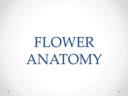 FLOWER ANATOMY. Flowers Function o Contain the sexual organs for the plant. o Produces fruit, which protects, nourishes and carries seeds. o Attracts.