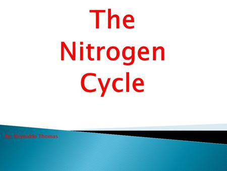 The Nitrogen Cycle By: Reynaldo Thomas.  Nitrogen is an essential element needed for protein formation.  The air around us contain approximately 79%
