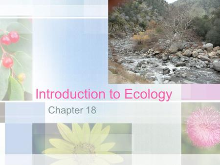 Introduction to Ecology Chapter 18. Ecology Section 18.1.