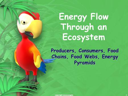 1 Energy Flow Through an Ecosystem Producers, Consumers, Food Chains, Food Webs, Energy Pyramids copyright cmassengale.