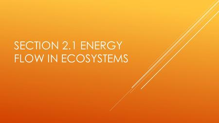 SECTION 2.1 ENERGY FLOW IN ECOSYSTEMS. HOW DOES ENERGY FLOW IN AN ECOSYSTEM?  Energy flow is the transfer of energy from one organism to another in an.