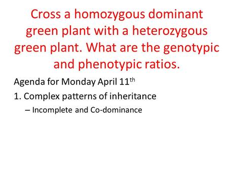 Cross a homozygous dominant green plant with a heterozygous green plant. What are the genotypic and phenotypic ratios. Agenda for Monday April 11 th 1.