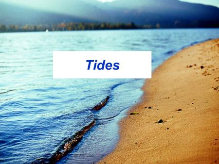 Tides. What are they? The rhythmic rising and falling of ocean surface levels.